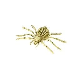 Edderkoppskjelett str. 20/20 cm