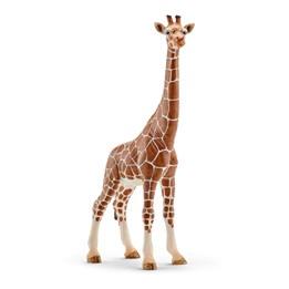 Schleich, Giraffhunn
